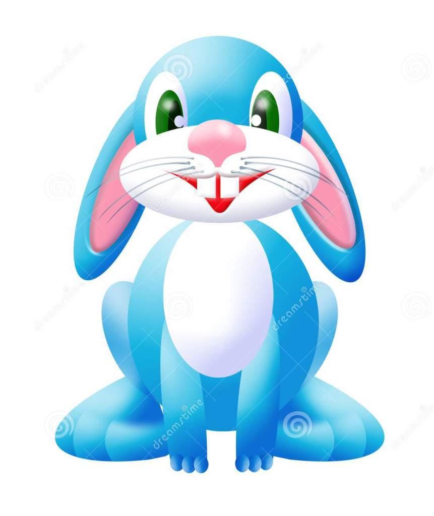 un joli lapin bleu